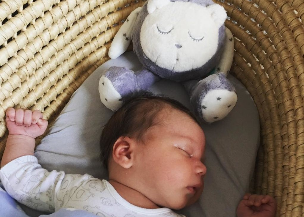 Pillow Magazine: The Bear Necessities